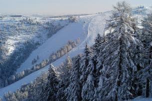 50+9 TROFEO del BARBA di sci alpino