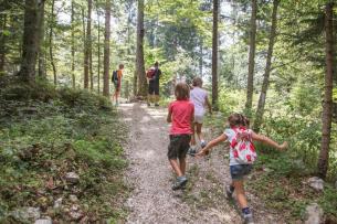 2^ Prova Campionato Trentino CSI di corsa orientamento - FOLGARIA - Fondo Grande - 8 giugno 2019