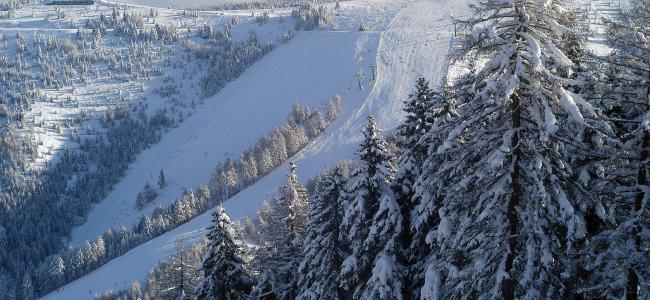 50+12 TROFEO del BARBA di sci alpino - 15 febbraio 2020